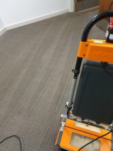 carpet cleaning pic 2